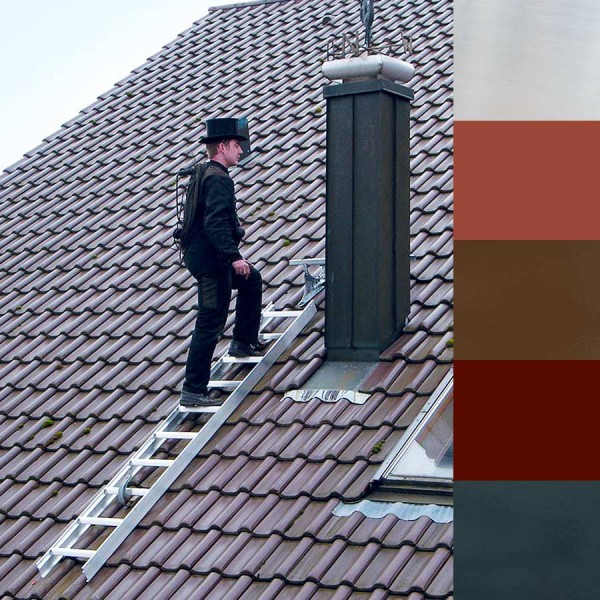 Günzburger Aluminium-Dachleiter